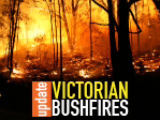 Victorian Jewish community supports Vinnies Victoria Bushfire Appeal