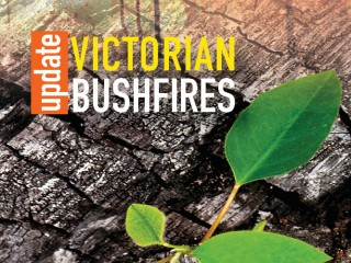 $250,000 Bushfire Education Scholarship fund launched